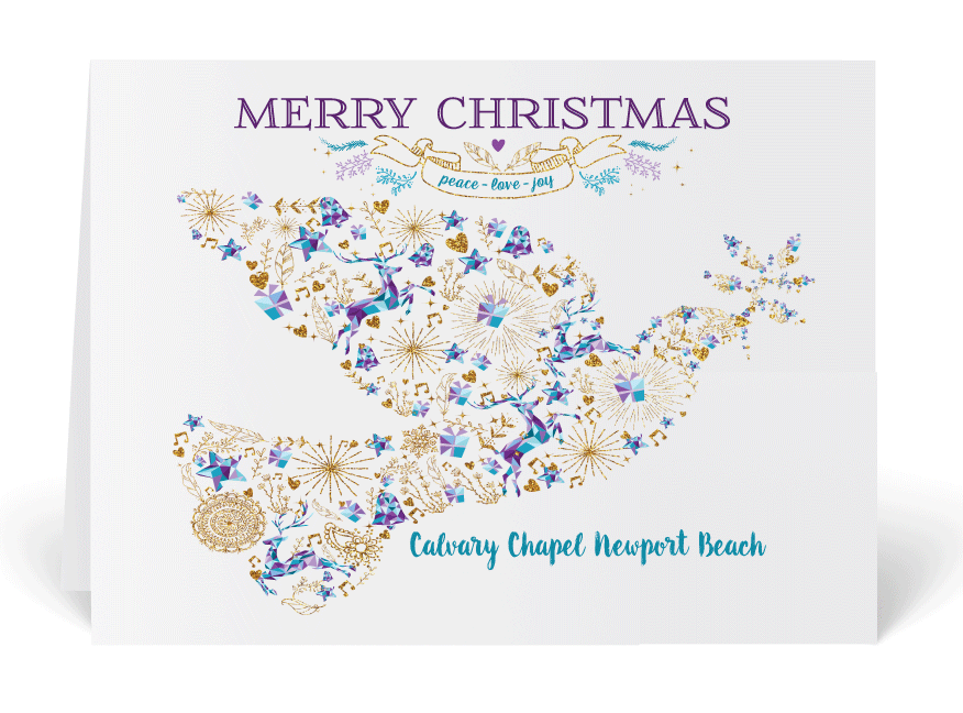 Whimsical Dove Merry Christmas Holiday Cards
