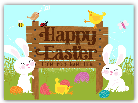 Cute Bunny Spring Easter Postcard