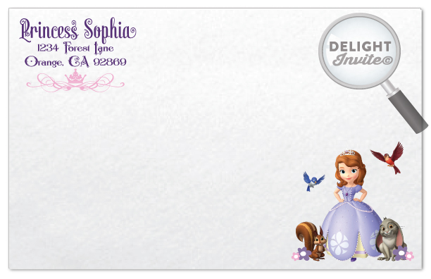 Sofia The First Birthday Invitations Di 660 Ministry Greetings